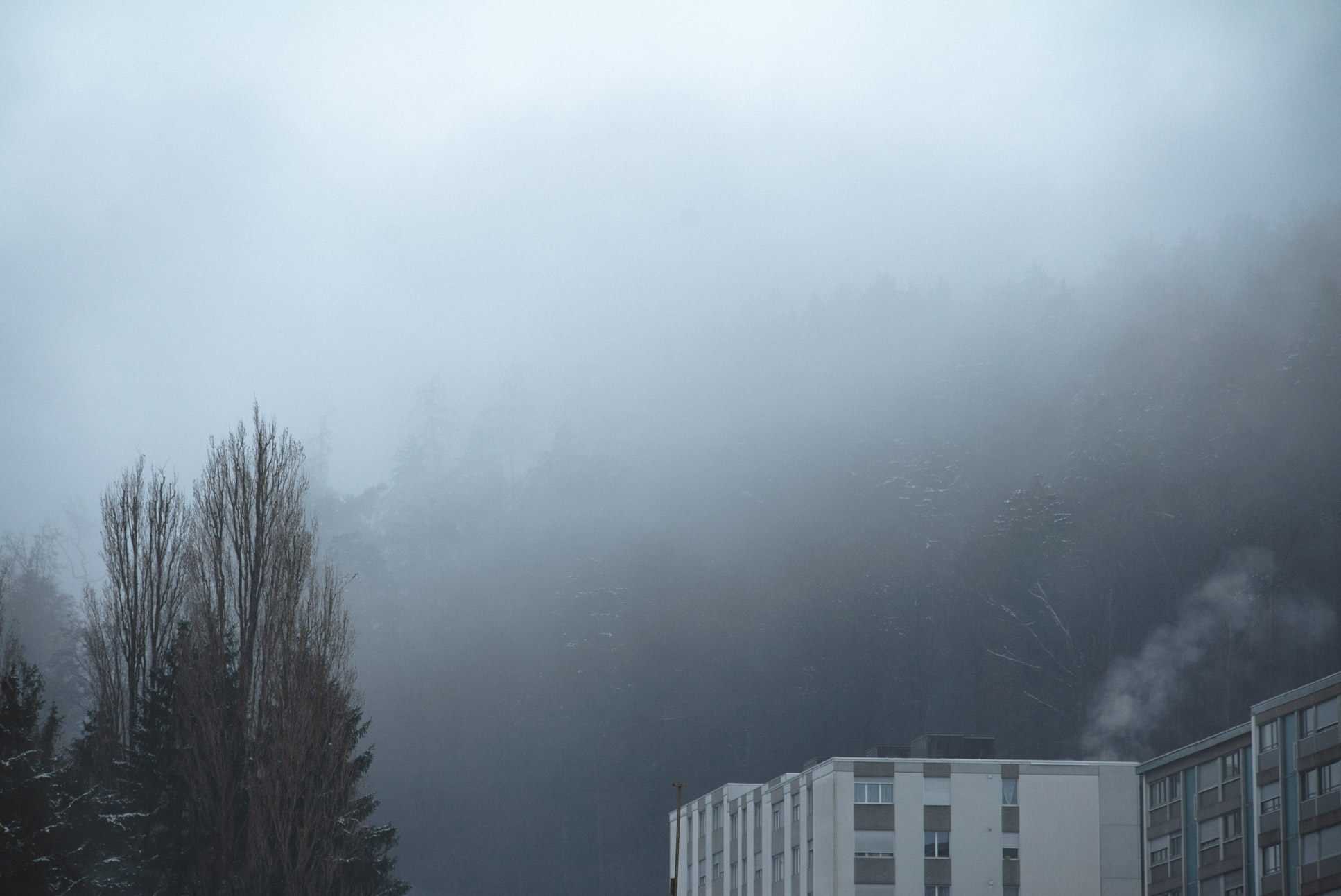 Grauholzstrasse