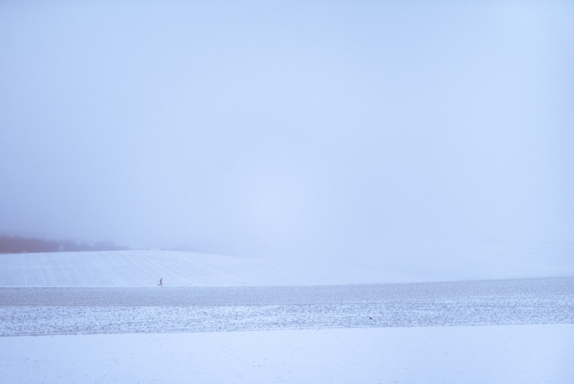 Photo by Pascal Sommer - Snow and fog is the best combination