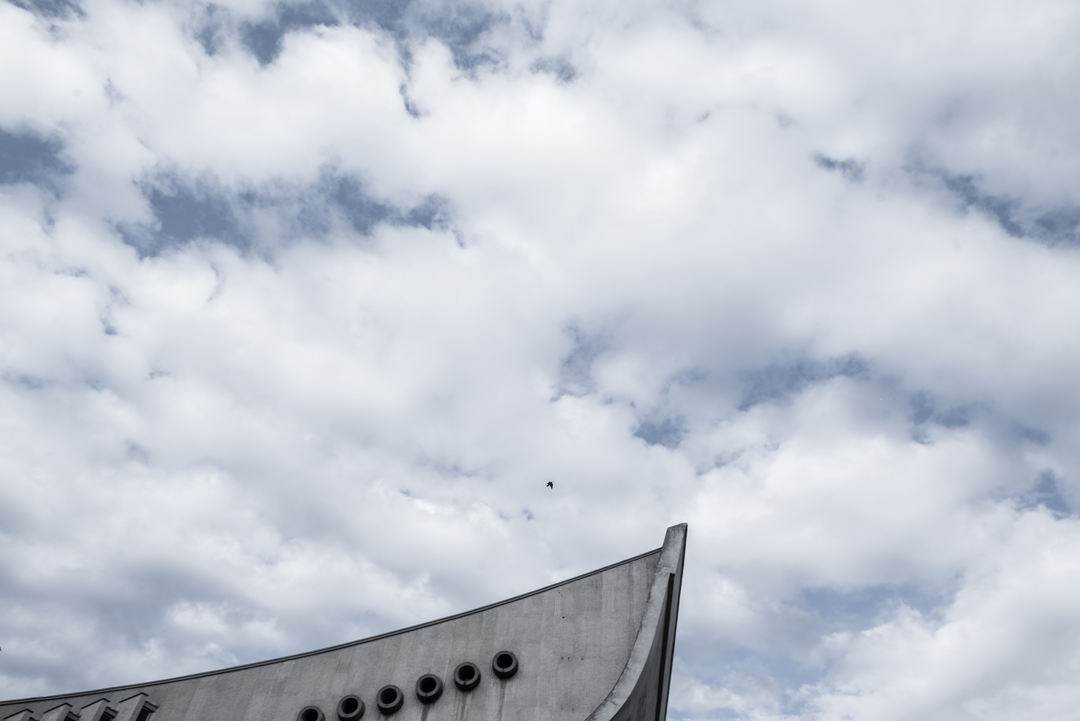 A bird above the Vilnius Palace of Concerts and Sports