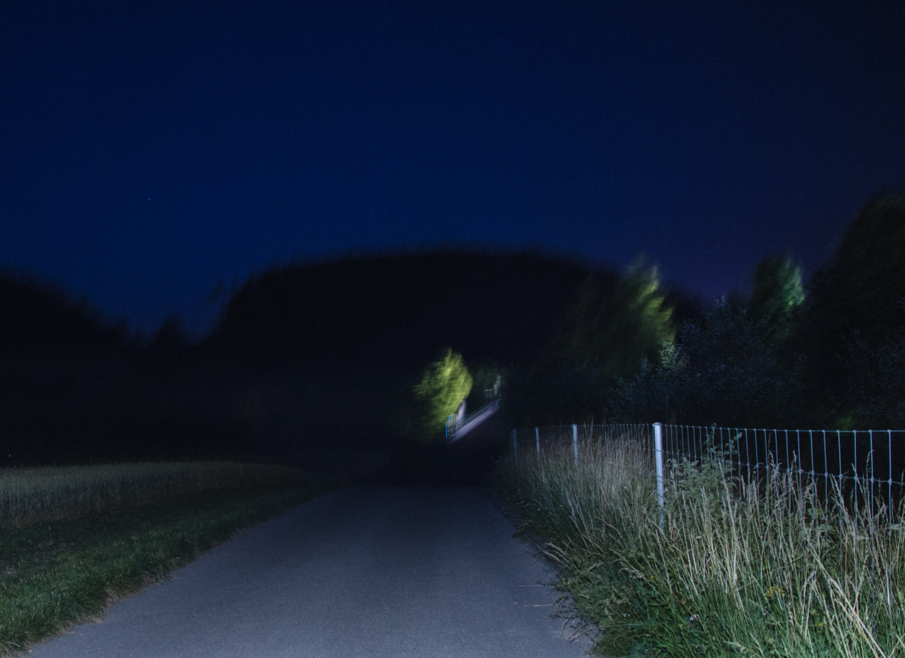 Photo by Pascal Sommer - 4 second handheld exposure with flash