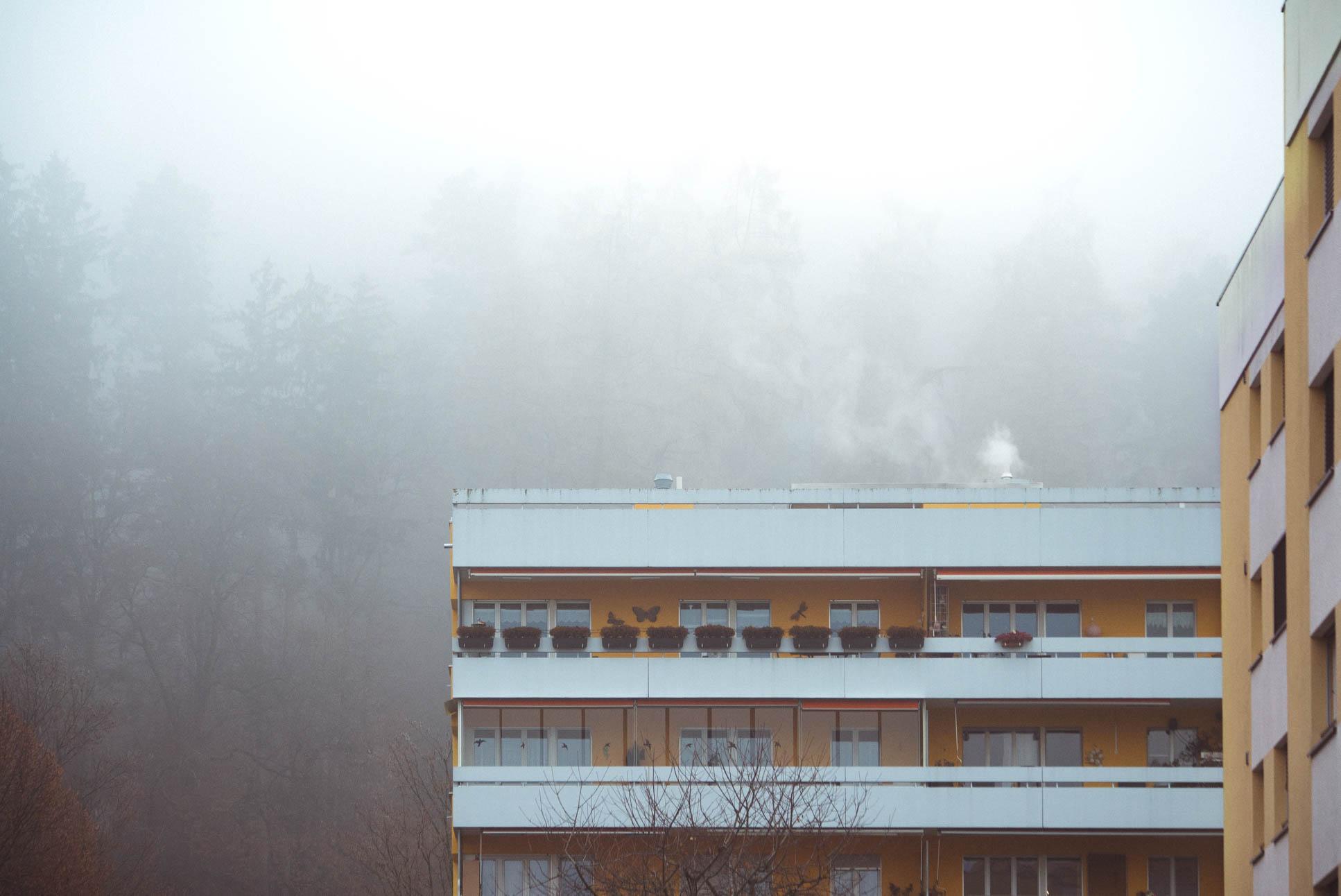 friendly neighbourhood fog