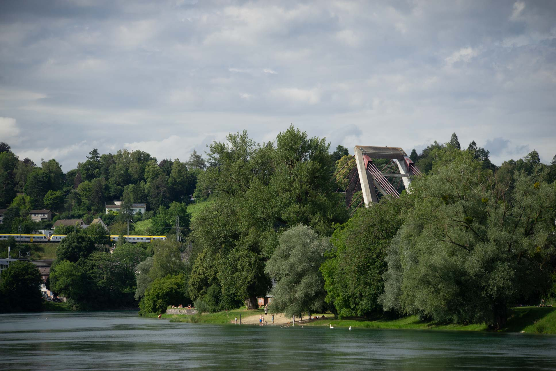 The pylon of the Rheinbrücke N4 is peeking out over the trees.