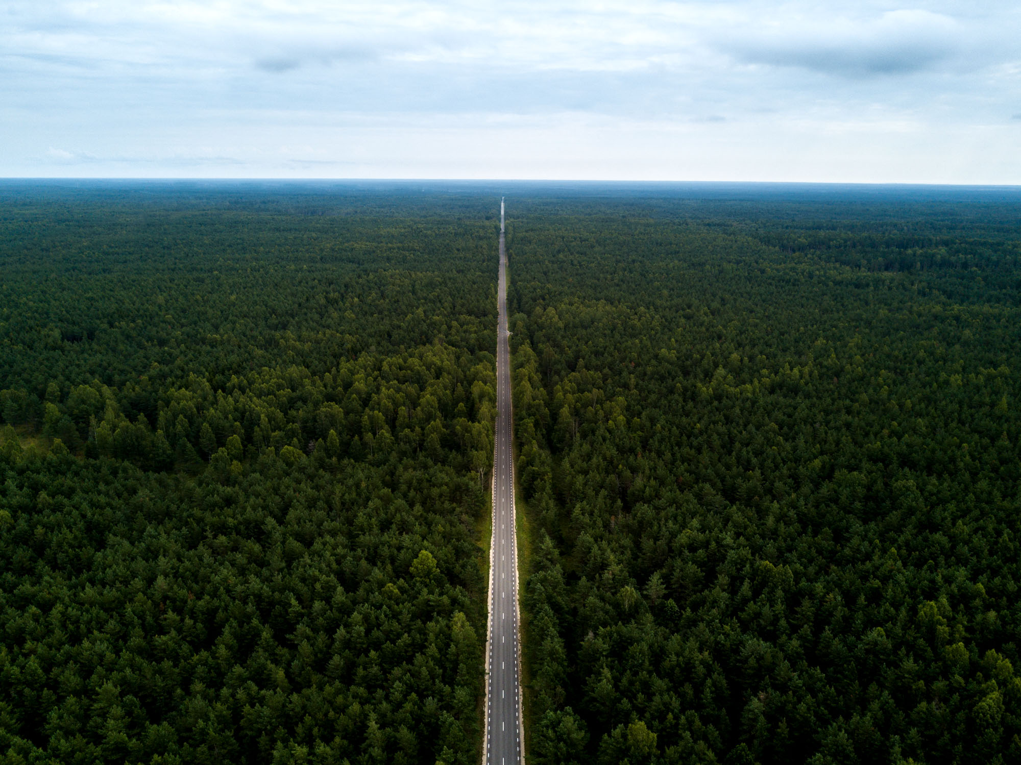 Photo by Pascal Sommer - A road on Saaremaa