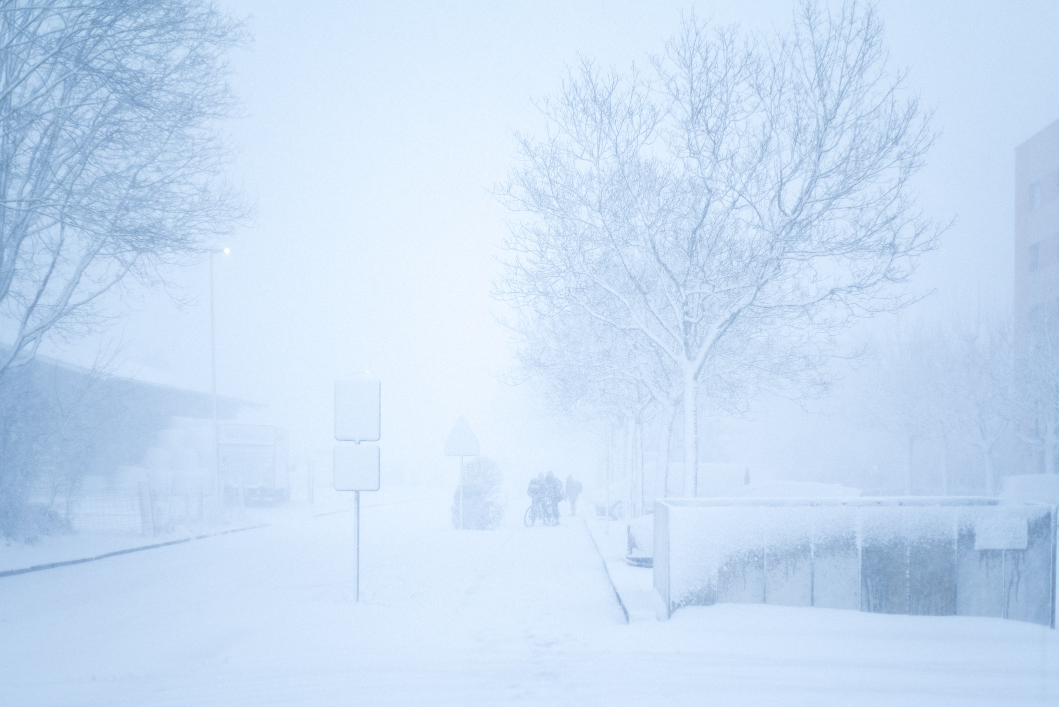 Photo by Pascal Sommer - When snow and fog collaborate to create the prettiest of gradients
