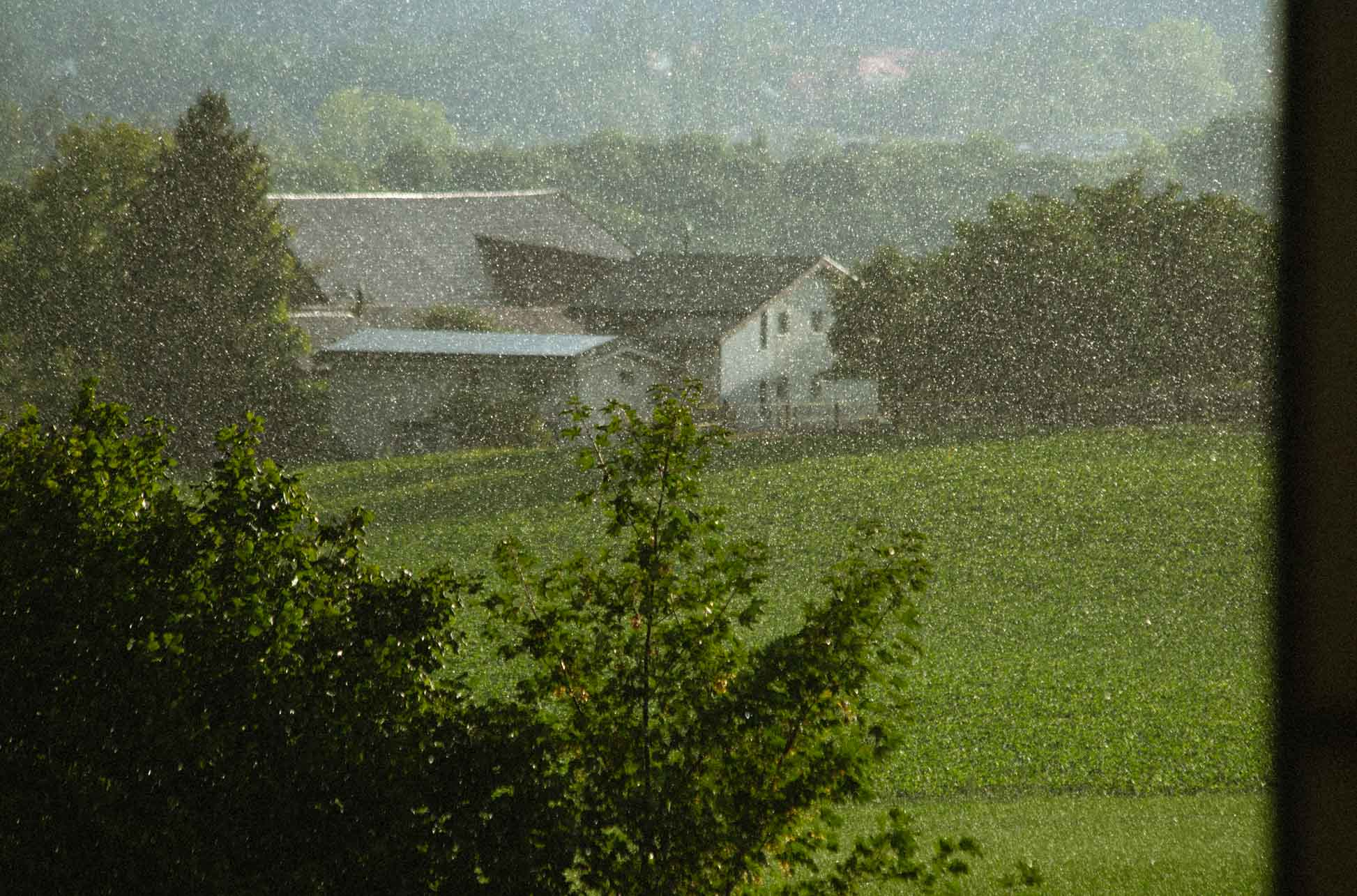 why film grain if you could just use the rain
