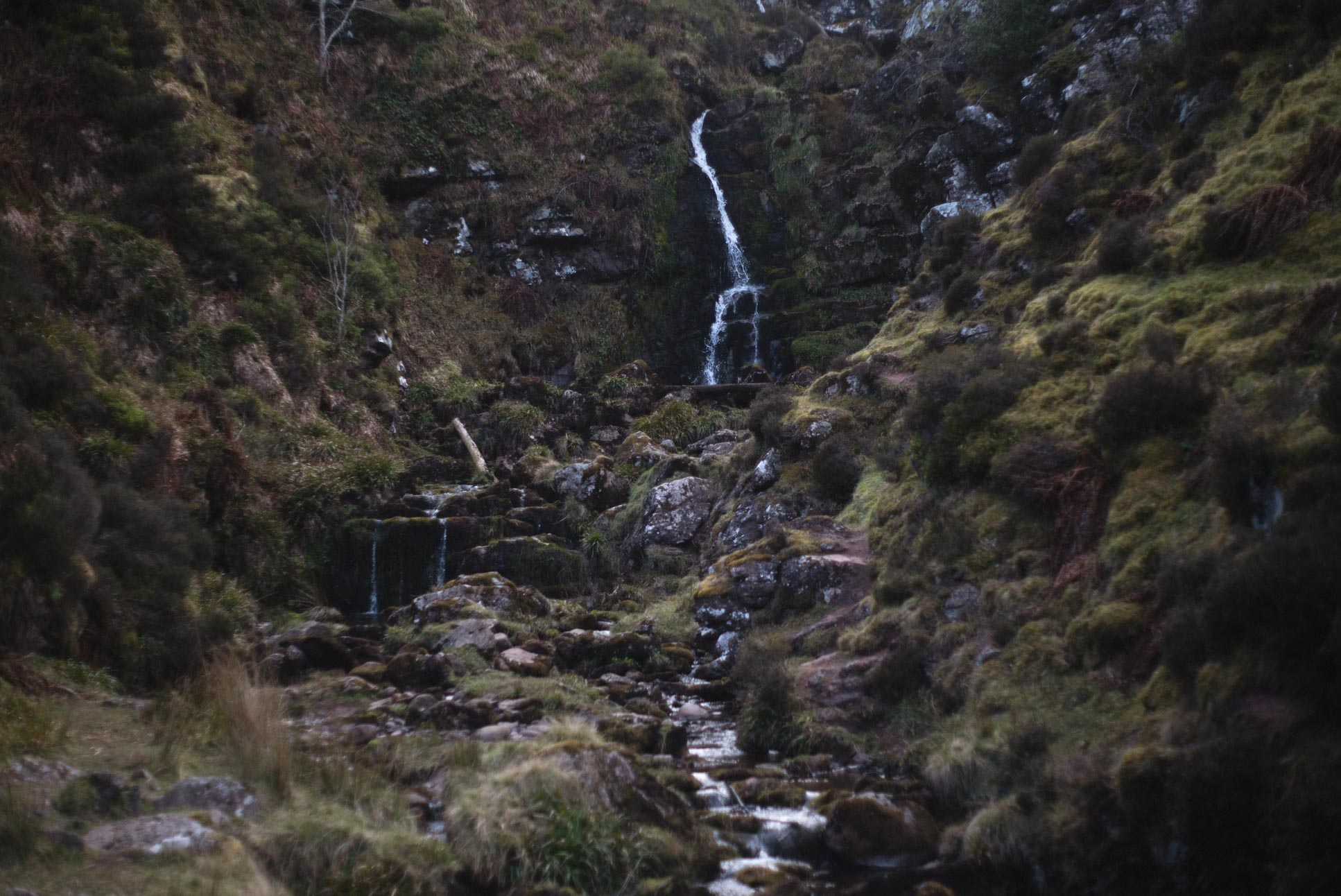 You might walk right past this small waterfall if you don't go looking for it.