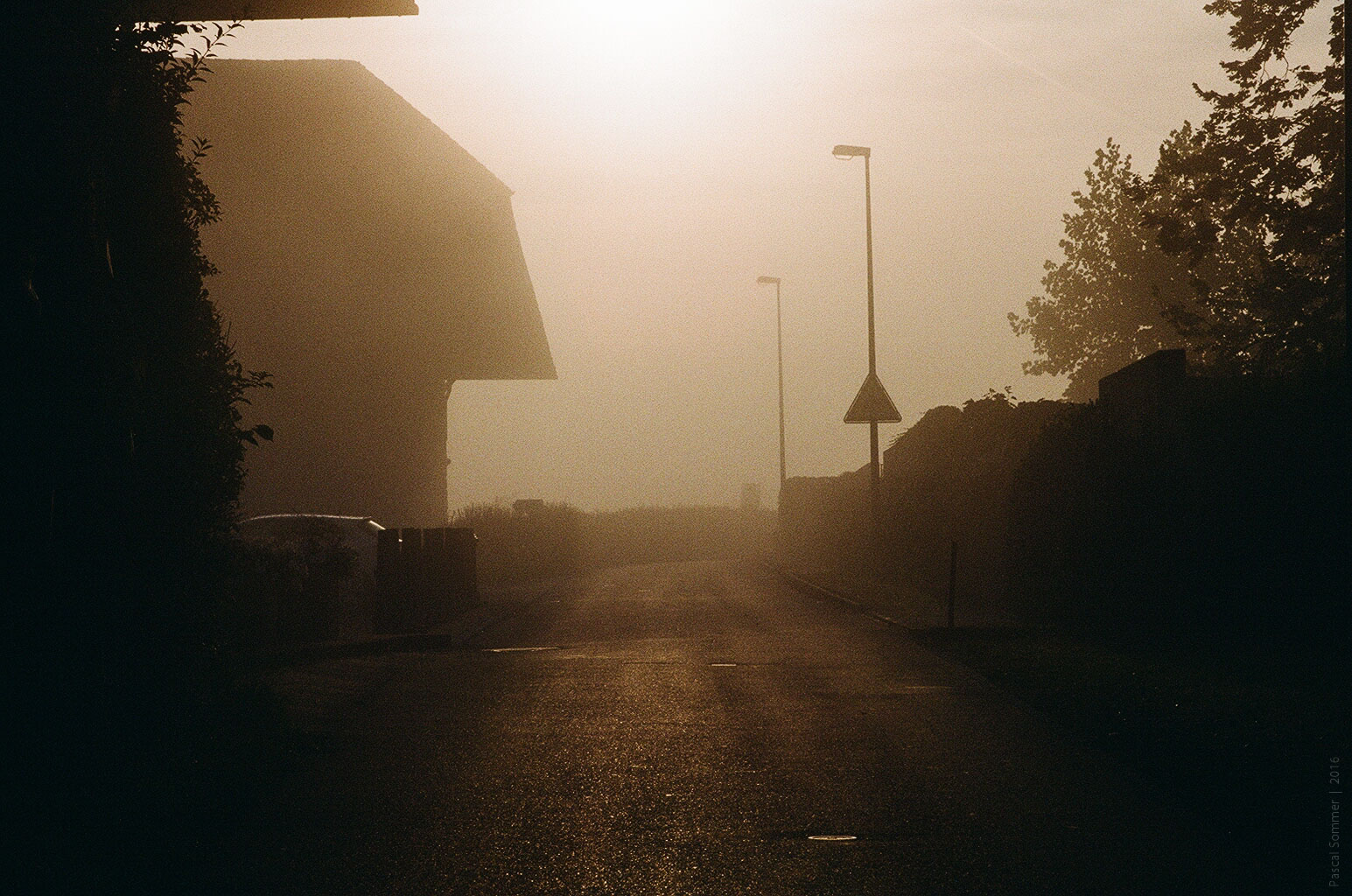 Photo by Pascal Sommer - Fog, early in the morning. Shot on analog.